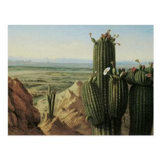 View from Maricopa Mountain Near Rio Gila by Pratt Postcard