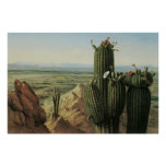 View from Maricopa Mountain Near Rio Gila by Pratt Poster