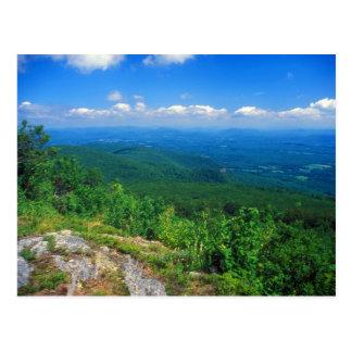 View from Mount Everett, Berkshires Postcard