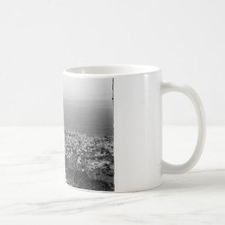 View from Mt. Carmel, circa 1922 Mug