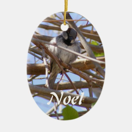View From My Swing Ornament
