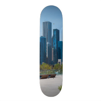 View From Navy Pier Skateboard