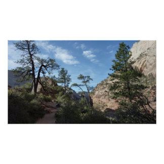 View from Scout Lookout at Zion National Park Poster