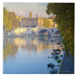View from the Ponte Sisto Bridge of the Tiber Tiles