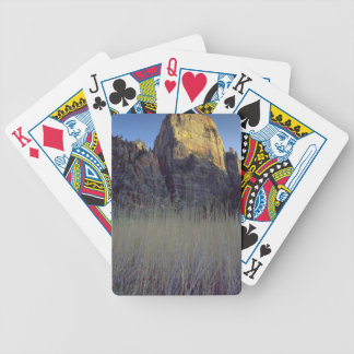 View from Virgin River flood plain, Zion Canyon Bicycle Playing Cards