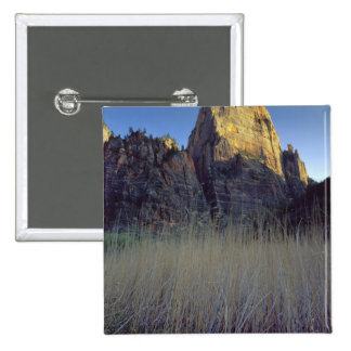 View from Virgin River flood plain, Zion Canyon 2 Inch Square Button