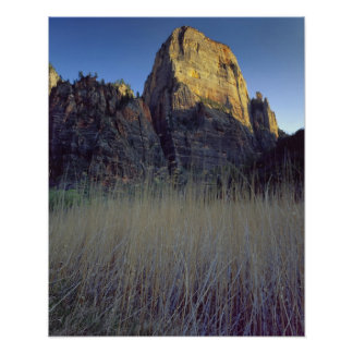 View from Virgin River flood plain, Zion Canyon Poster