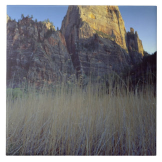 View from Virgin River flood plain, Zion Canyon Large Square Tile