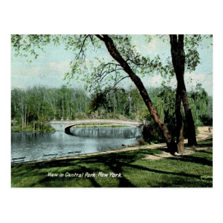 View in Central Park, New York 1911 Vintage Post Card
