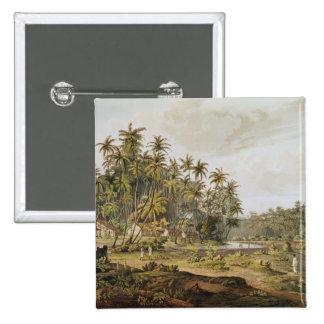 View near Point du Galle, Ceylon Button