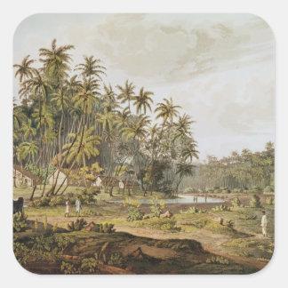 View near Point du Galle, Ceylon Square Sticker