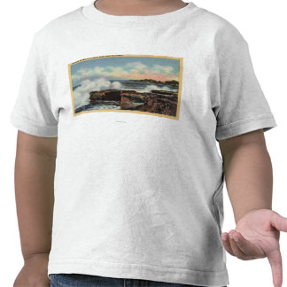 View of a Breaker on West Cliff Drive Shirts