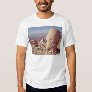 View of a colossal head and an eagle t-shirt