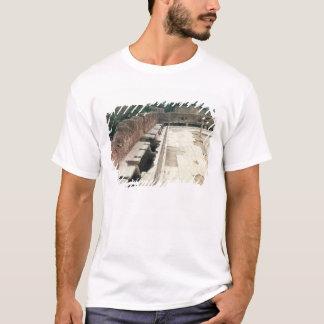 View of a communal lavatory T-Shirt