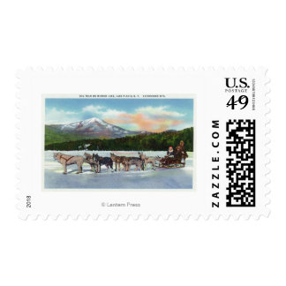 View of a Dogsled Team on Mirror Lake Stamp