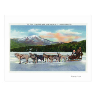 View of a Dogsled Team on Mirror Lake Postcard
