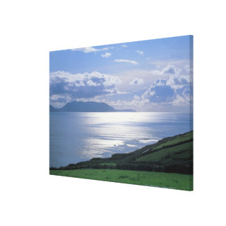 view of a grassy slope by the sea stretched canvas print