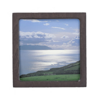 view of a grassy slope by the sea jewelry box