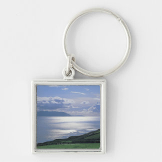 view of a grassy slope by the sea keychain