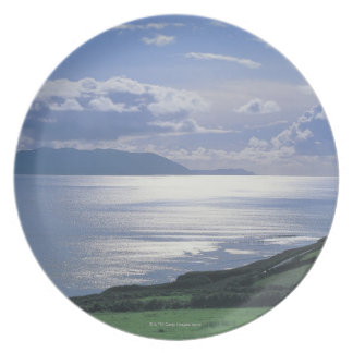 view of a grassy slope by the sea melamine plate
