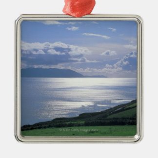 view of a grassy slope by the sea christmas ornament