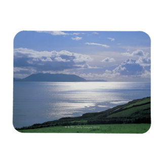 view of a grassy slope by the sea magnets