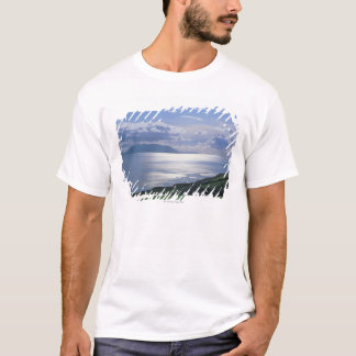 view of a grassy slope by the sea T-Shirt