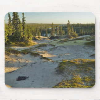 View of a lake and the surrounding sand hills, mouse pad