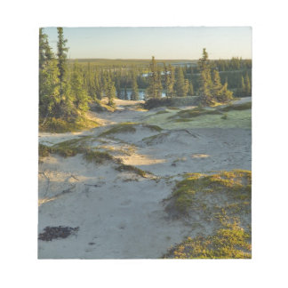 View of a lake and the surrounding sand hills, memo note pad