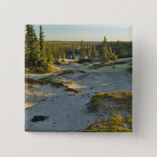 View of a lake and the surrounding sand hills, pinback button