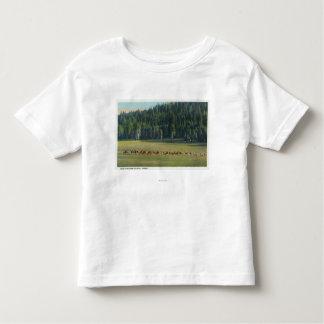 View of a Pack of Deer Grazing Tee Shirt