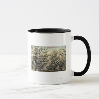 View of a Prune Orchard of 300,000 Trees Mug