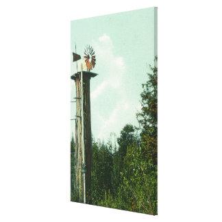 View of a Sequoia Wind MillEureka, CA Canvas Print