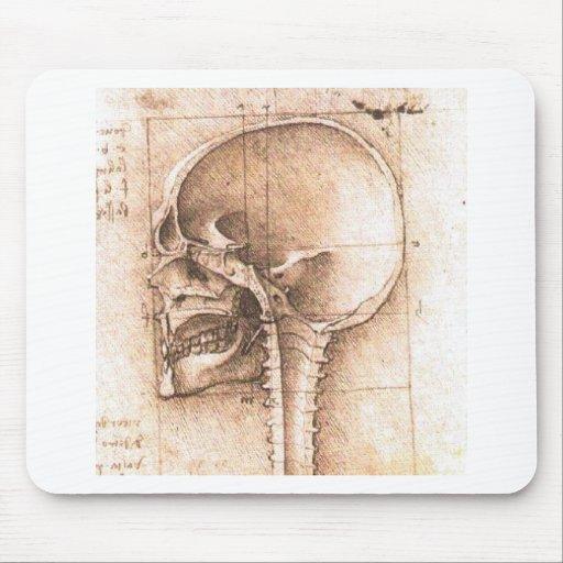 View of a Skull by Leonardo Da Vinci c. 1489 Mousepads