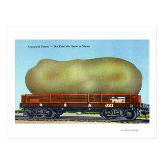 View of an Aroostook Potato on a Train Trolley Postcard