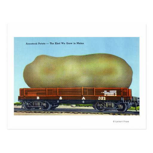 View of an Aroostook Potato on a Train Trolley Post Card