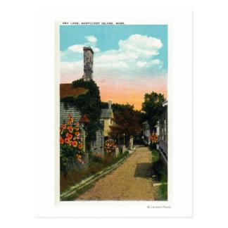 View of Ash Lane Postcard