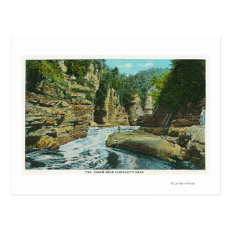 View of Ausable Chasm near Elephant's Head Postcard