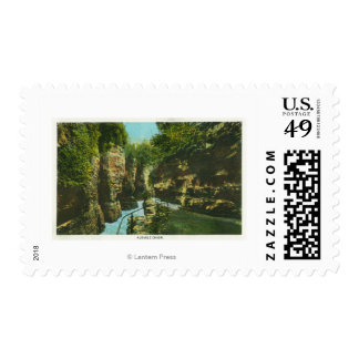 View of Ausable Chasm Postage