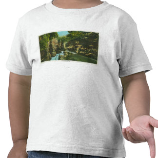 View of Ausable Chasm Tee Shirt