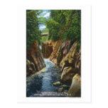 View of Ausable River Falls and Bridge Postcard