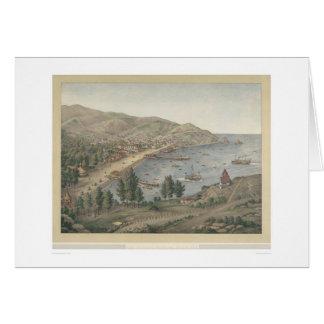 View of Avalon Harbor, Santa Catalina Island(1211) Card