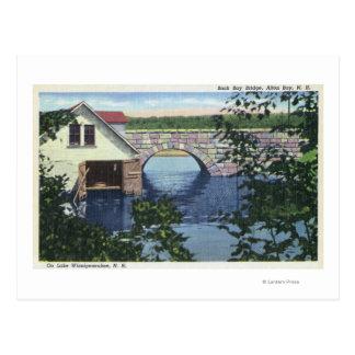 View of Back Bay Bridge Postcard