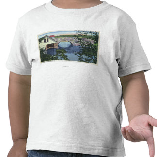 View of Back Bay Bridge Tee Shirts