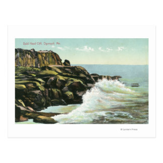 View of Bald Head Cliff Postcard