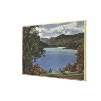 View of Beautiful Shasta Lake Gallery Wrapped Canvas