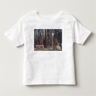 View of Big Trees in Mariposa Grove Shirts