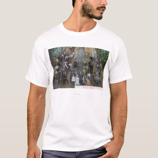 View of Boole, the Largest Tree in the World T-Shirt