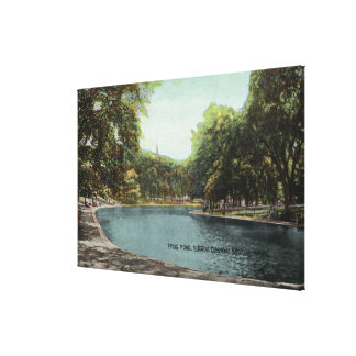 View of Boston Common Frog Pond # 2 Canvas Print