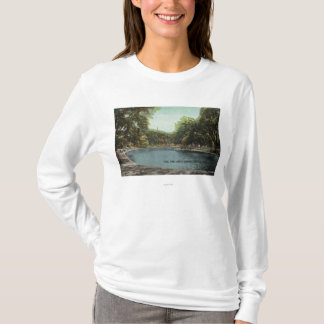 View of Boston Common Frog Pond # 2 T-Shirt